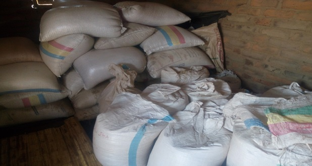 Some of bags of aggregated maize by Mwamulo Farmers' Club